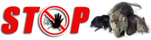 Stopp Topi derattizzazione