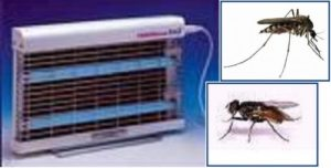 banner lampada UV per insetti alati