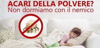 disinfestazione Acari della polvere a Catanzaro Calabria