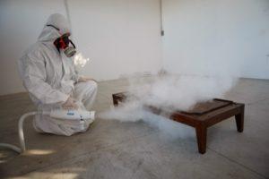 disinfestazione eliminazione dei tarli del legno dai mobili vapore saturo secco a Catanzaro
